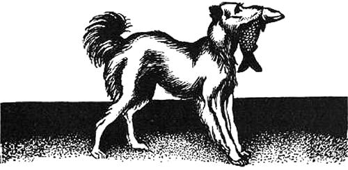 Воспоминания собаки Мускуби<br />(Рассказ) - i_002.png