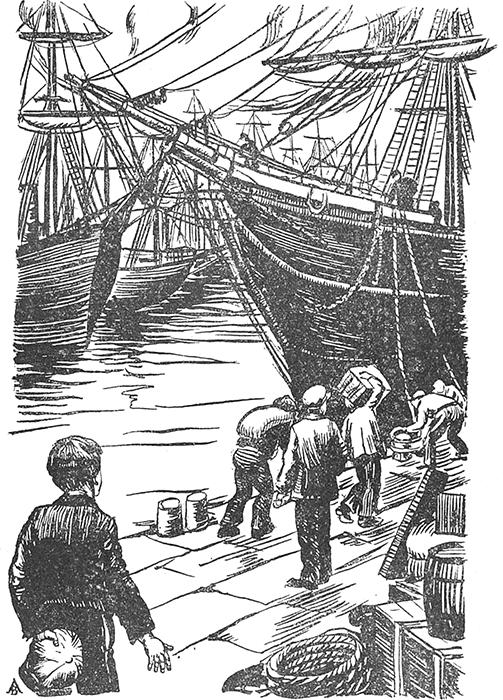По дебрям и морям<br />(Жизнь и приключения Генри Стэнли и Джемса Кука) - i_002.png