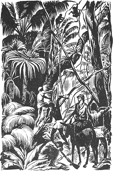 По дебрям и морям<br />(Жизнь и приключения Генри Стэнли и Джемса Кука) - i_003.png