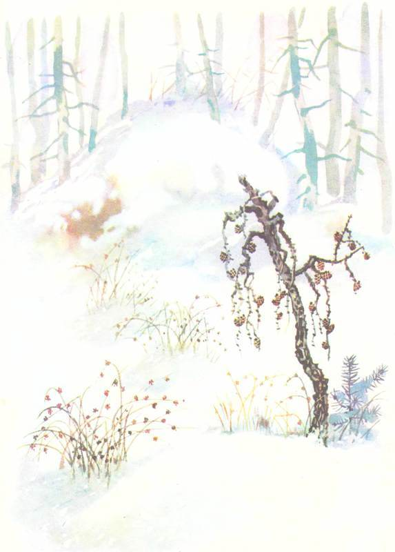 Зимовье на Студеной - i_001.jpg