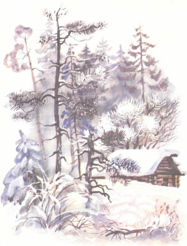 Зимовье на Студеной - i_005.jpg