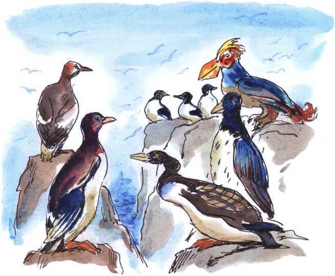 О честном вороне, коварной сове и глупом лисе<br />(Эскимосские сказки) - i_004.jpg