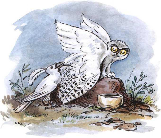 О честном вороне, коварной сове и глупом лисе<br />(Эскимосские сказки) - i_005.jpg