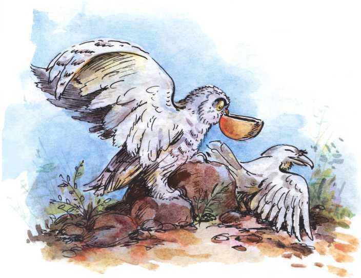 О честном вороне, коварной сове и глупом лисе<br />(Эскимосские сказки) - i_007.jpg