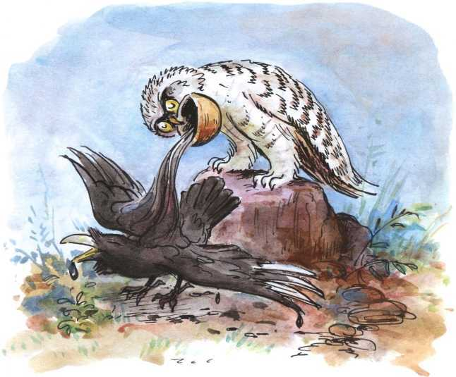 О честном вороне, коварной сове и глупом лисе<br />(Эскимосские сказки) - i_008.jpg