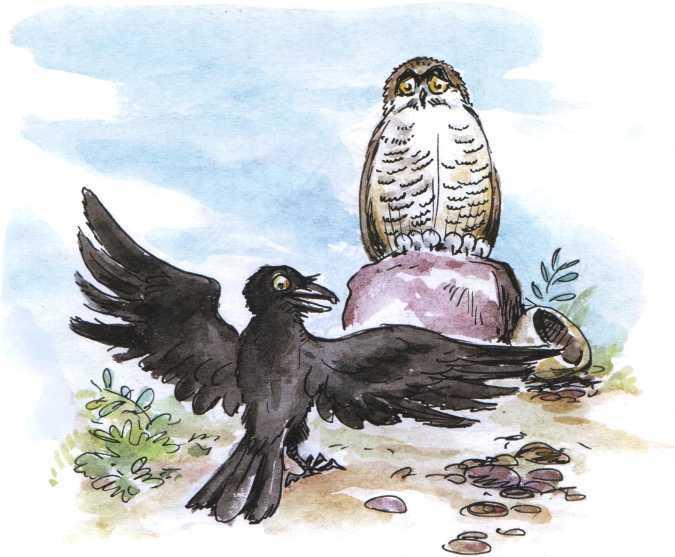 О честном вороне, коварной сове и глупом лисе<br />(Эскимосские сказки) - i_009.jpg