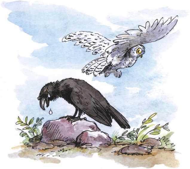 О честном вороне, коварной сове и глупом лисе<br />(Эскимосские сказки) - i_010.jpg